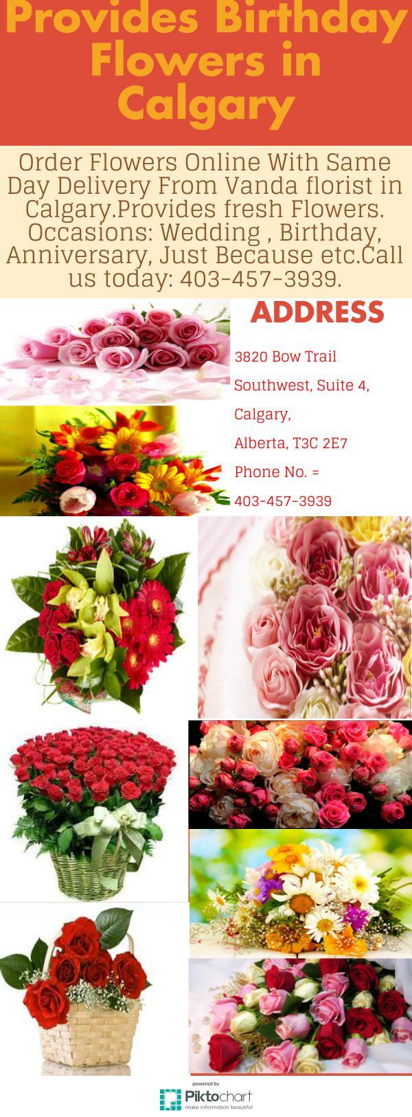 Provides birthday flowers in calgary piktochart visual editor izmirmasajfo