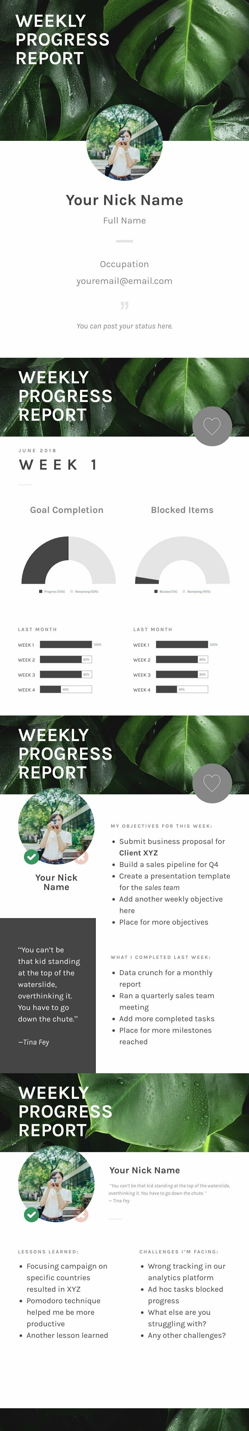 Weekly Progress Report