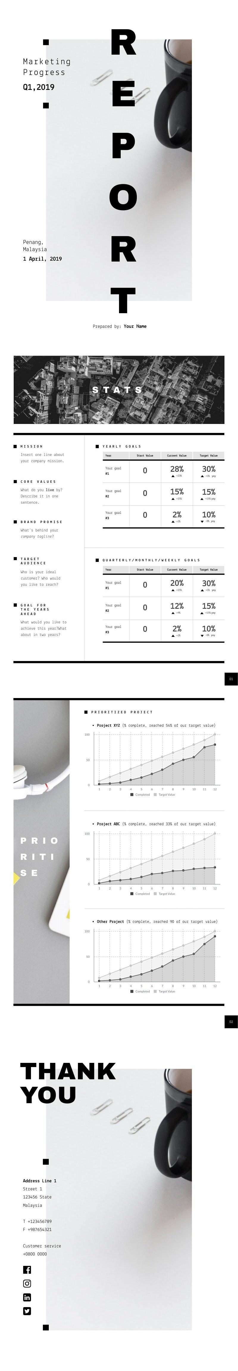 Marketing Progress Report