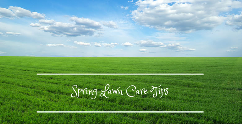 early spring lawn care tips - 780×400